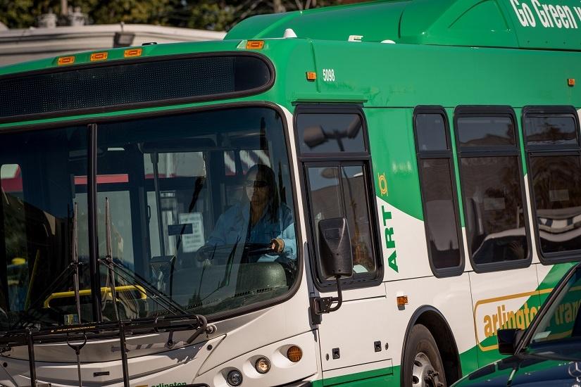 art-bus-driver-close-up