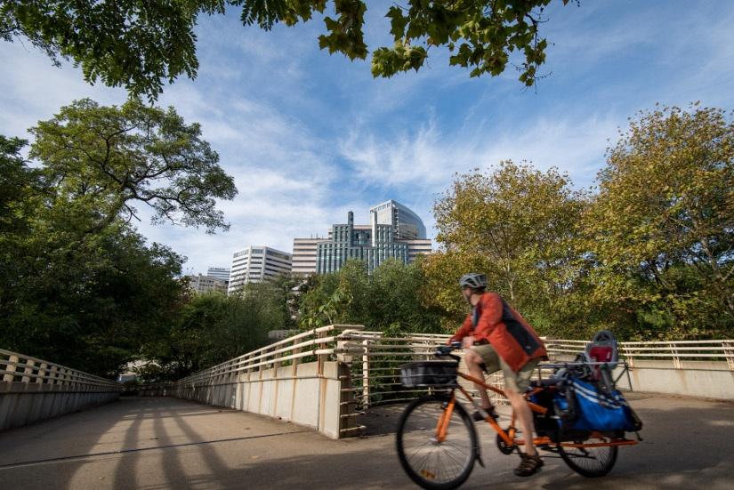 bike-trail-panniers.jpg