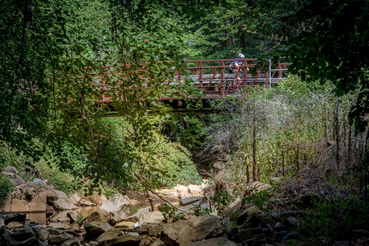 biker-nature-bridge