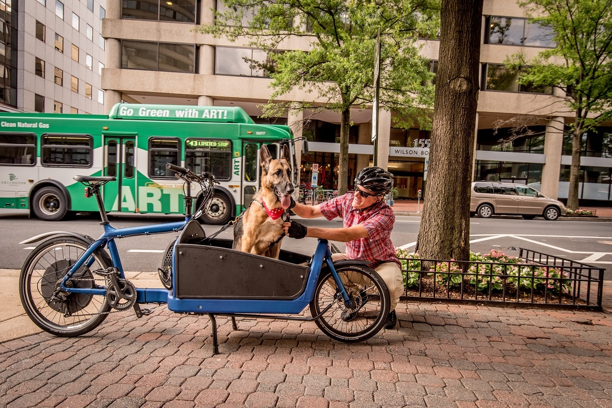 cargo-bike-dog-bus