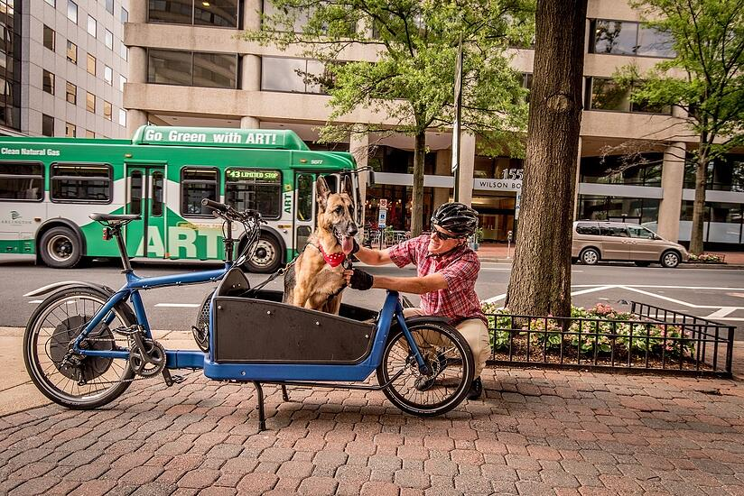 cargo-bike-dog-bus