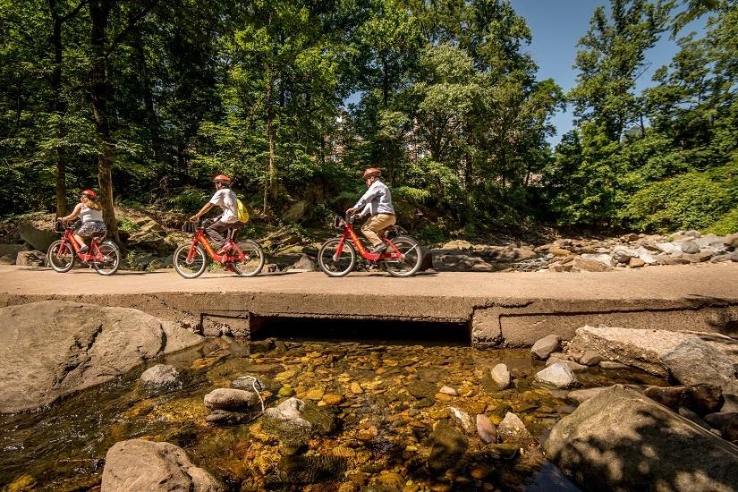 three-bikes-over-creek.jpg