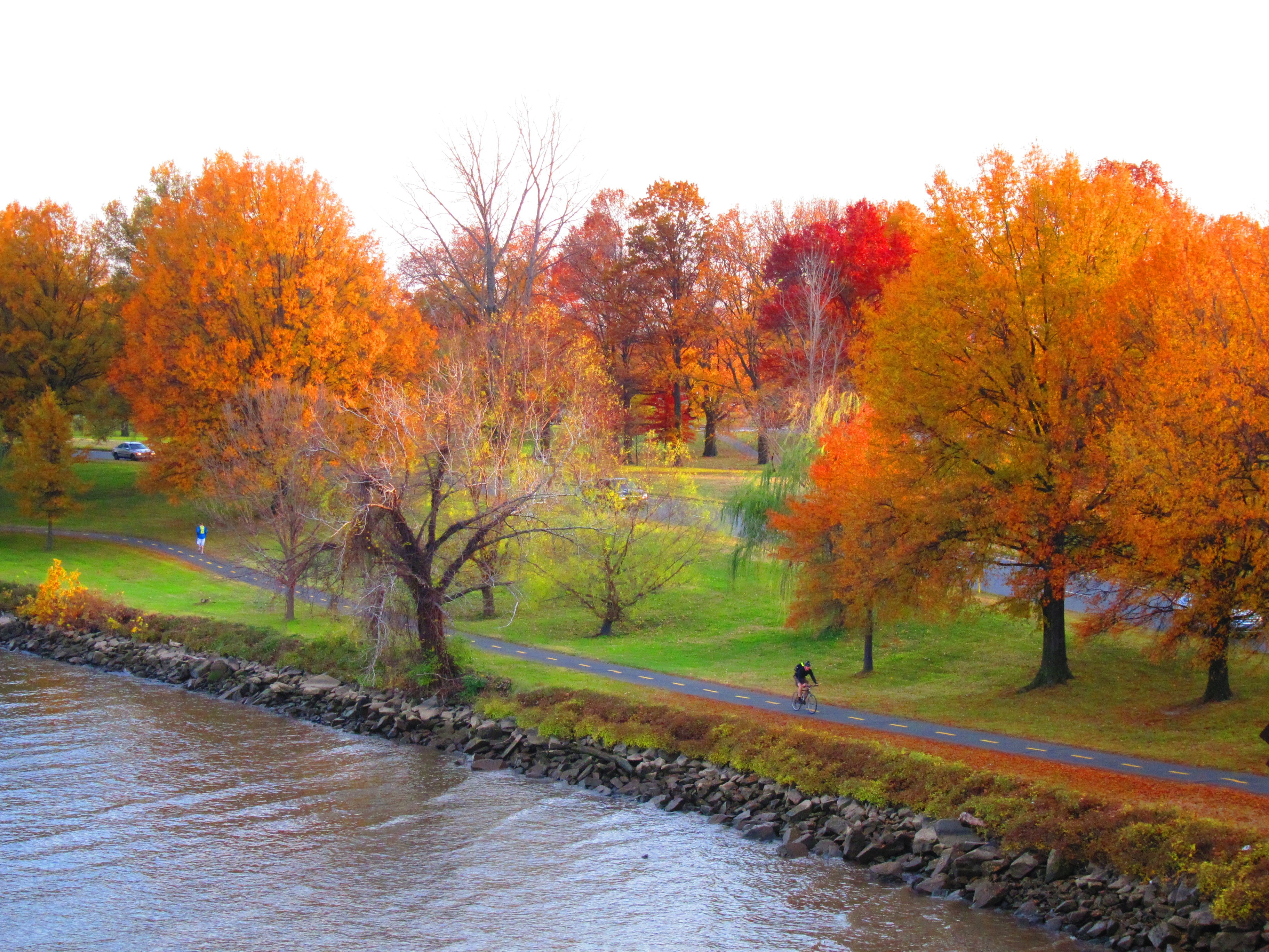 Arlington Cemetery Fall Foliage
