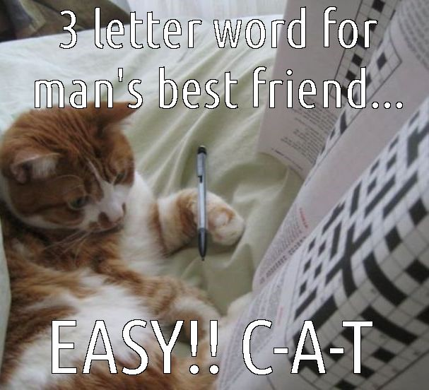 Cat crossword