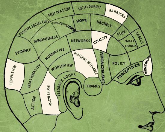 Choices Brain