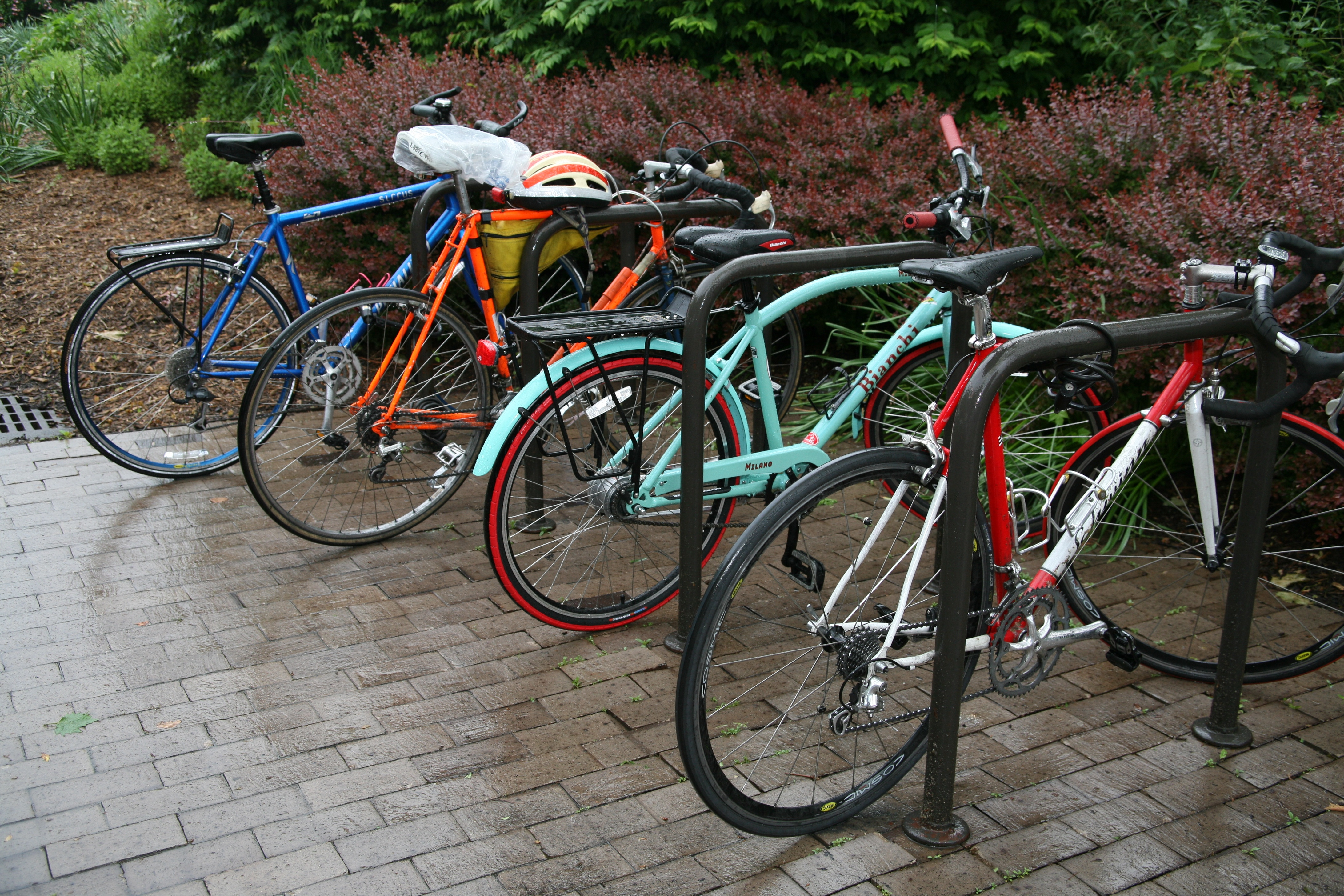 Bikes at bike rack