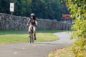 Bike in Arlington