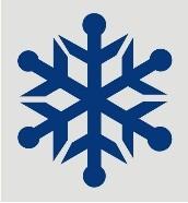 Art Bus - Severe Weather Snowflake
