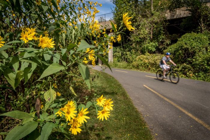 Biking and Hiking trails in Arlington County, VA