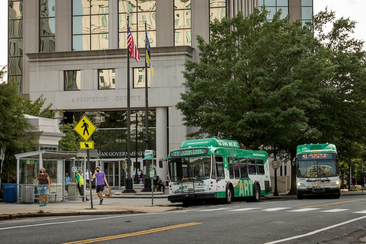 art-buses-at-county-building