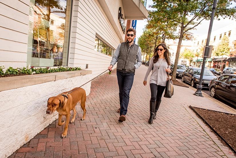 walking-dog.jpg