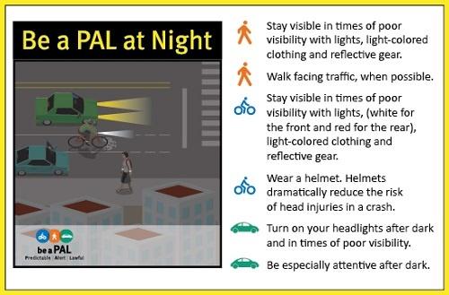 Be a PAL at Night